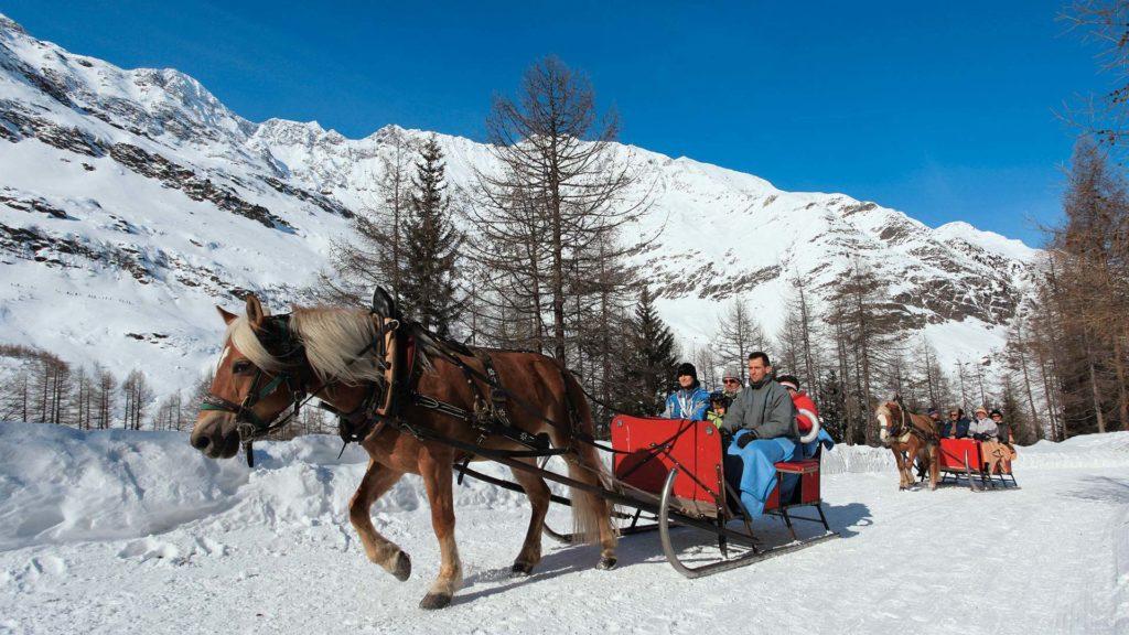 Winter Kutschenfahrt Pfelders